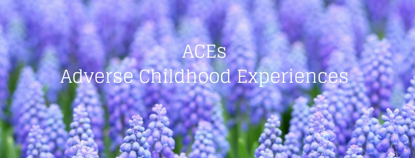 ACEs Adverse Childhood Experiences Inge Vandecaetsbeek